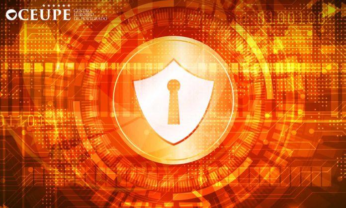 Máster Online en Ciberseguridad a distancia