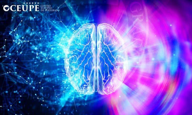 Maestría Online en Neuropsicología en el Ámbito Educativo