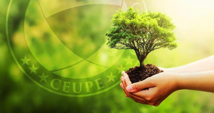 Por qué son importantes las energías renovables